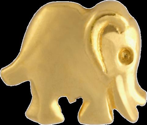 GoldStar, Elefant